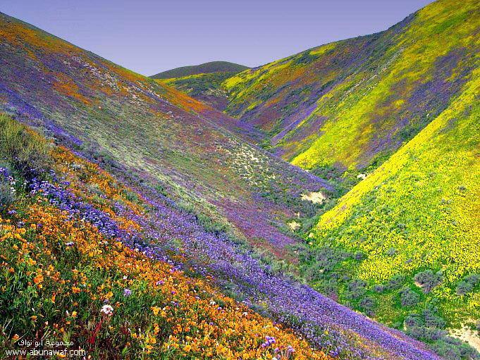 اجمل الصور 2011 مناظر طبيعية