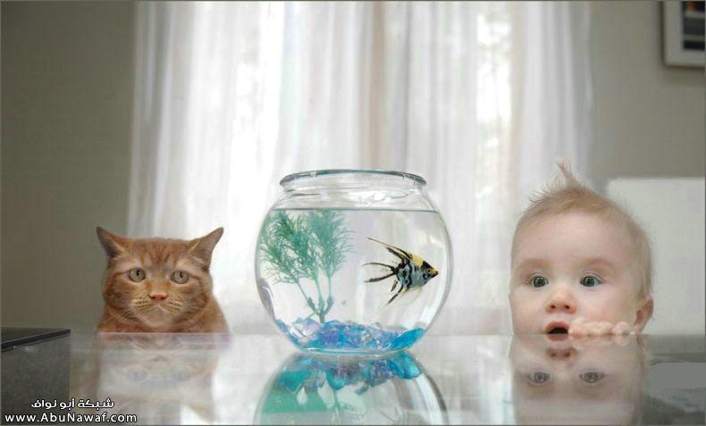 اجدد صور الاطفال 2011 صور اطفال جديدة