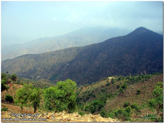 صور طبيعة جازان وجبالها الساحرة mk10587_img_7328.jpg