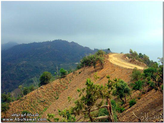 صور طبيعة جازان وجبالها الساحرة mk10587_img_7332.jpg