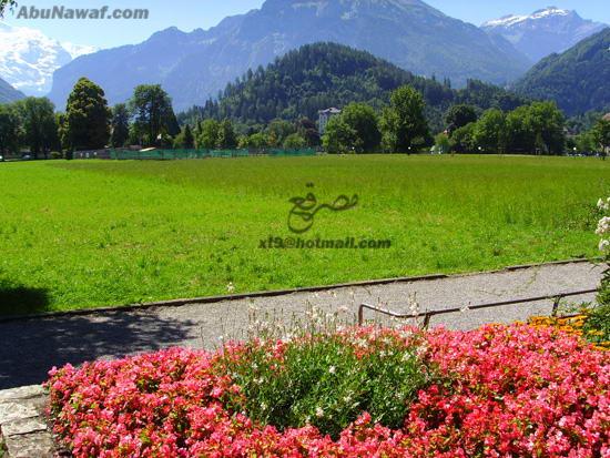 مناظر طبيعية من سويسرا